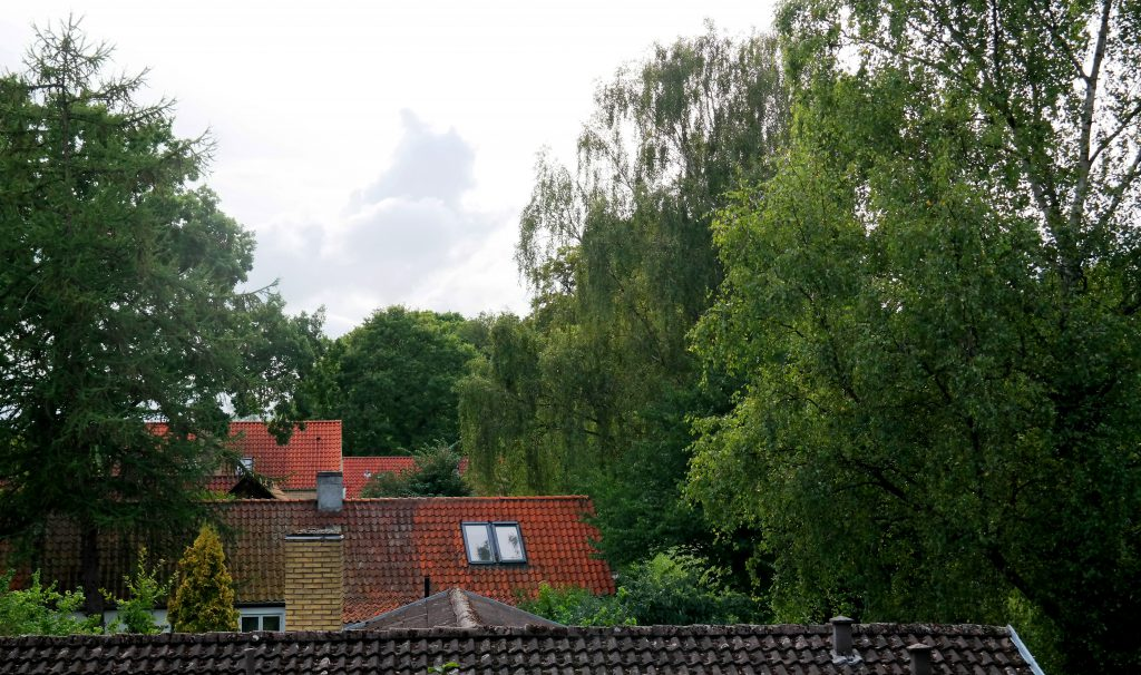 View from our house in Denmark